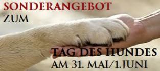 tag des Hundes am 31. Mai